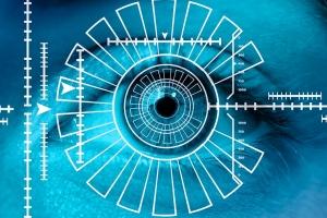 Biometría, reconocimento e identificación: DiOnBo y Helios