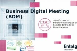 ¿Conoces la solución BDM by IR4DT de Entelgy? Aceleramos el proceso de la transformación digital del management de las empresas
