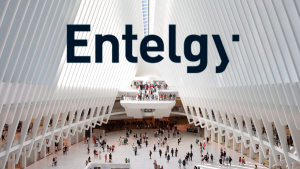 Descubre el valor en cadena de Entelgy, The BusinessTech Consultancy