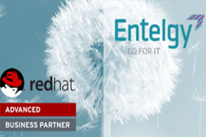 Entelgy logra el reconocimiento Advanced Business Partner de Red Hat